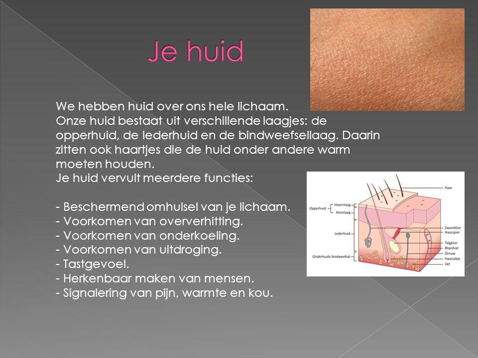 We hebben huid over ons hele lichaam. Onze huid bestaat uit verschillende laagjes: de opperhuid, de lederhuid en de bindweefsellaag. Daarin zitten ook