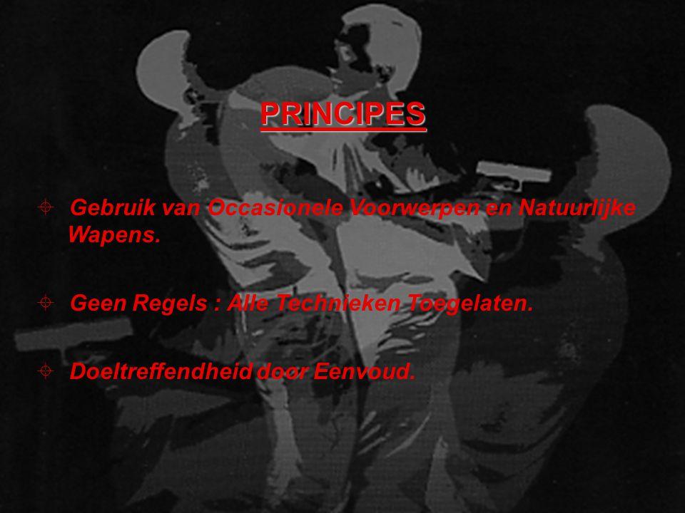 PRINCIPES ± Gebruik van Occasionele Voorwerpen en Natuurlijke Wapens.