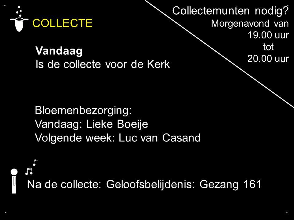 .... COLLECTE Vandaag Is de collecte voor de Kerk Bloemenbezorging: Vandaag: Lieke Boeije Volgende week: Luc van Casand Na de collecte: Geloofsbelijde