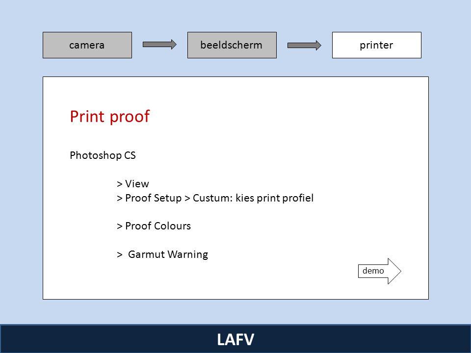 R camerabeeldschermprinter LAFV Photoshop CS > View > Proof Setup > Custum: kies print profiel > Proof Colours > Garmut Warning Print proof demo