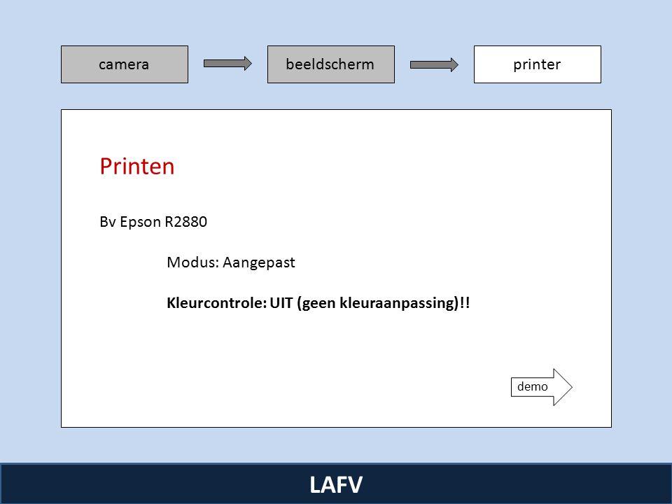 R camerabeeldschermprinter LAFV Bv Epson R2880 Modus: Aangepast Kleurcontrole: UIT (geen kleuraanpassing)!.
