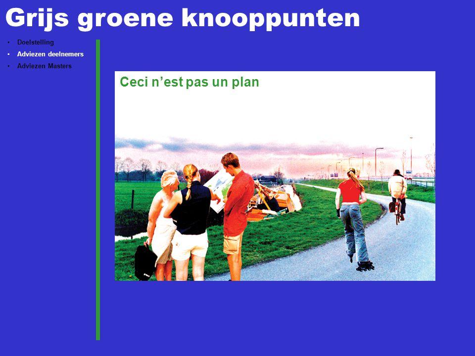 Grijs groene knooppunten Doelstelling Adviezen deelnemers Adviezen Masters Ceci n'est pas un plan