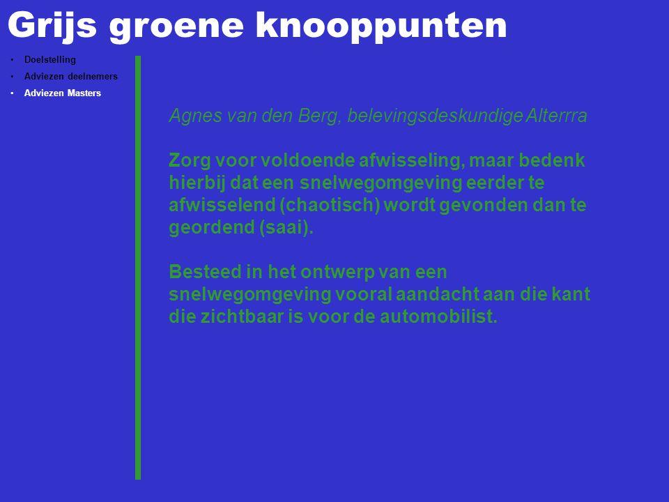 Grijs groene knooppunten Doelstelling Adviezen deelnemers Adviezen Masters Agnes van den Berg, belevingsdeskundige Alterrra Zorg voor voldoende afwisseling, maar bedenk hierbij dat een snelwegomgeving eerder te afwisselend (chaotisch) wordt gevonden dan te geordend (saai).