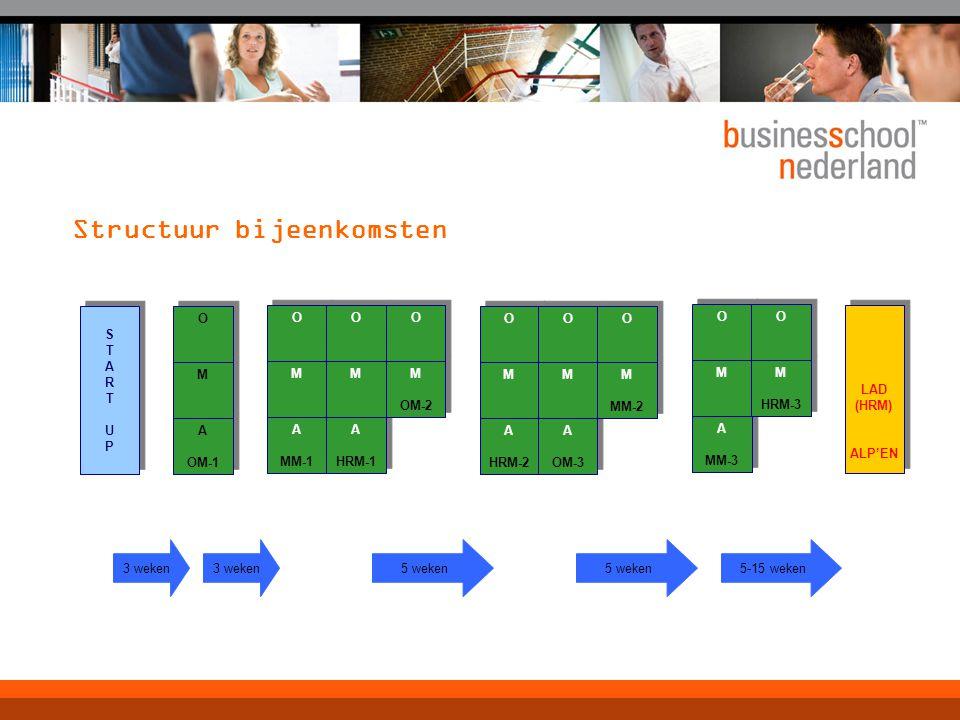 Info-momenten over het maken van een ALP  Start-up erg algemeen  Tijdens OM2: Instrumenten (methodologie)  Tijdens MM en HRM  In de subset  Projectrapportage W.