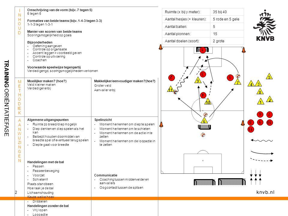2 Ruimte (x bij y meter):35 bij 40 Aantal hesjes (+ kleuren):5 rode en 5 gele Aantal ballen:5 Aantal pionnen:15 Aantal doelen (soort):2 grote INHOUDIN
