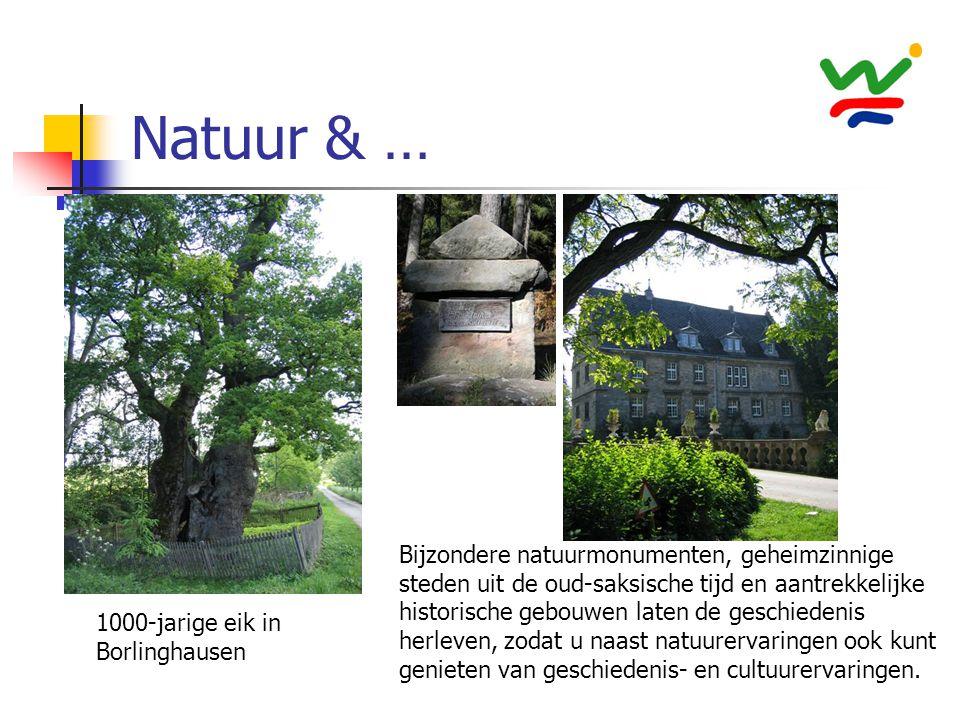 Natuur & … Bijzondere natuurmonumenten, geheimzinnige steden uit de oud-saksische tijd en aantrekkelijke historische gebouwen laten de geschiedenis he