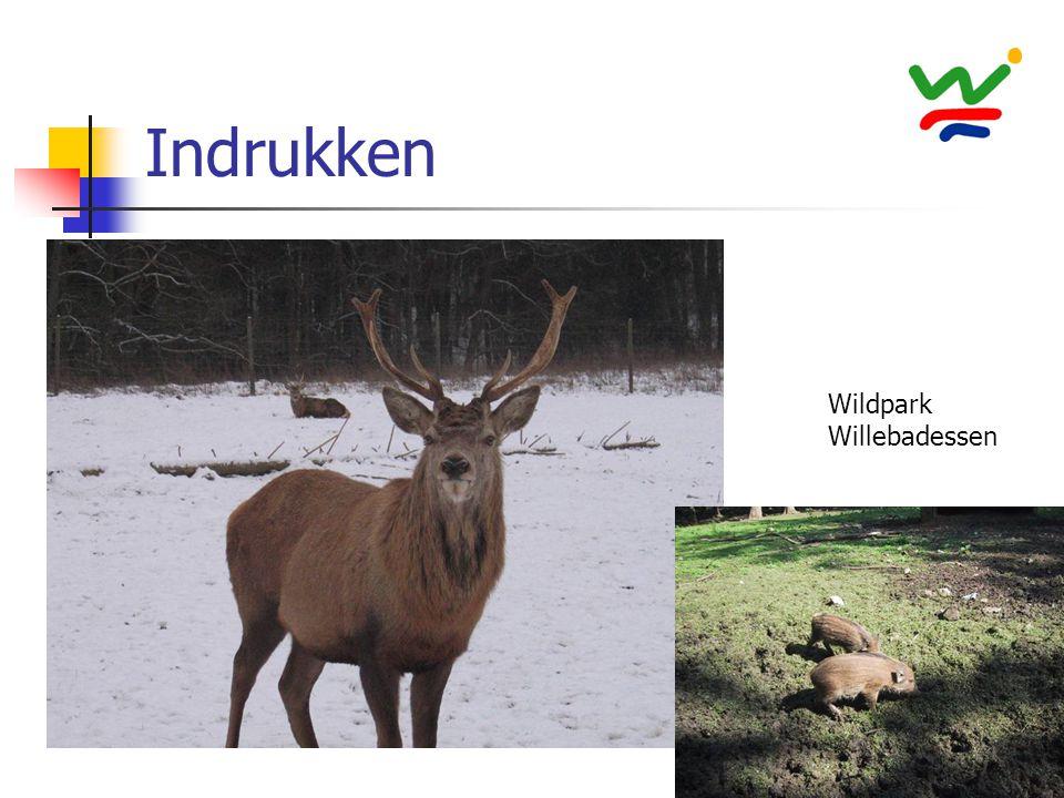 Indrukken Wildpark Willebadessen