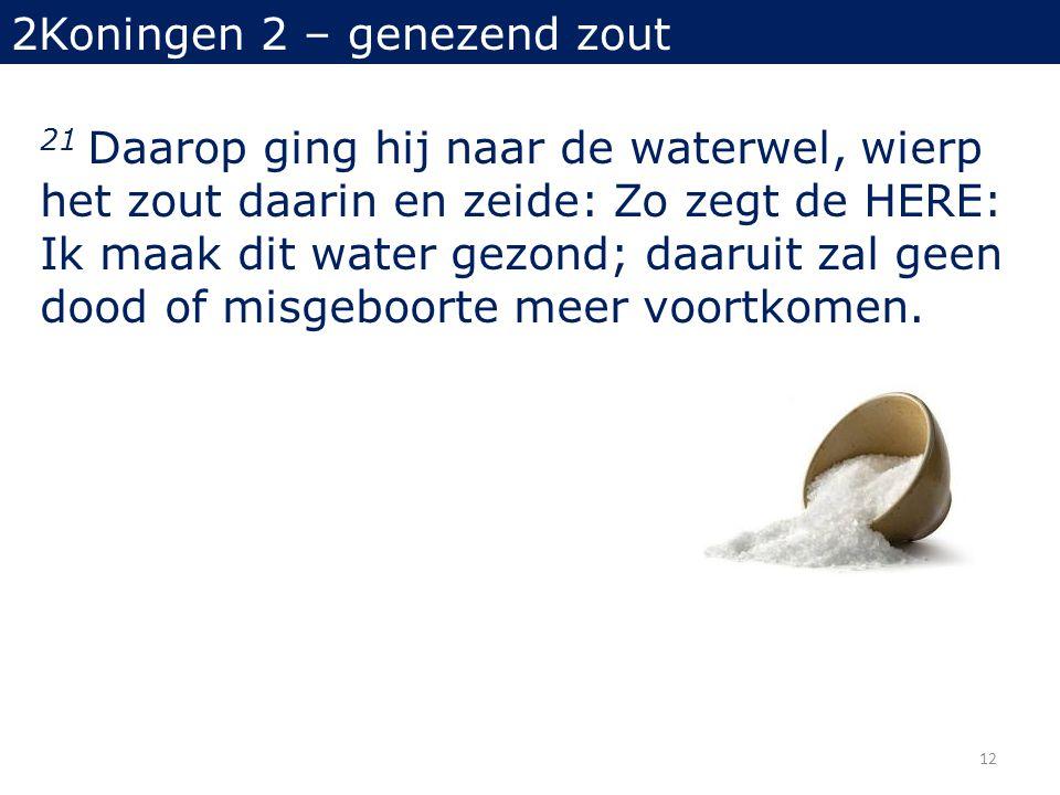 21 Daarop ging hij naar de waterwel, wierp het zout daarin en zeide: Zo zegt de HERE: Ik maak dit water gezond; daaruit zal geen dood of misgeboorte meer voortkomen.