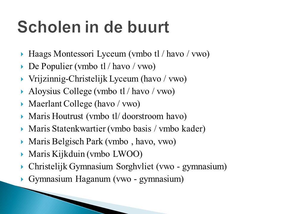  Haags Montessori Lyceum (vmbo tl / havo / vwo)  De Populier (vmbo tl / havo / vwo)  Vrijzinnig-Christelijk Lyceum (havo / vwo)  Aloysius College