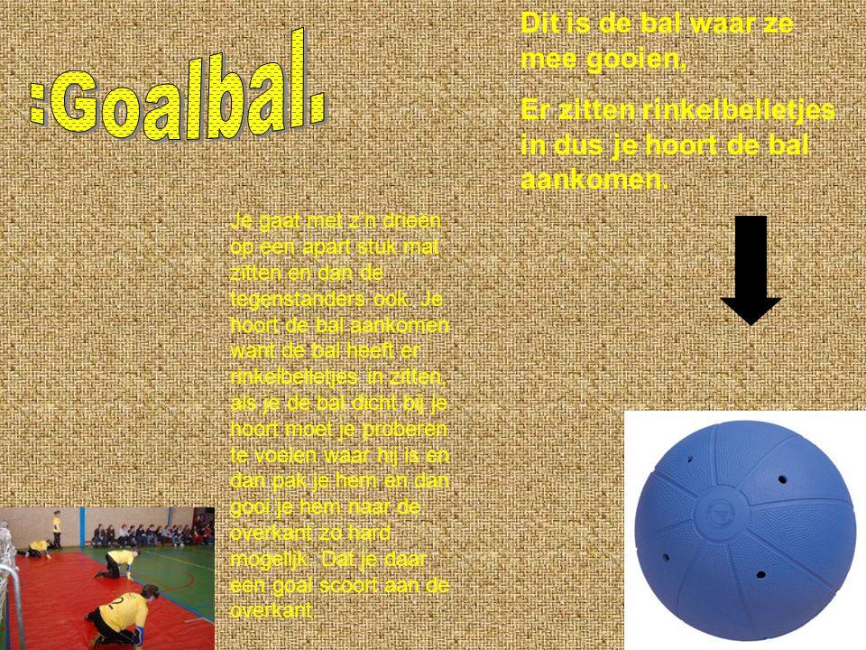 Dit is de bal waar ze mee gooien, Er zitten rinkelbelletjes in dus je hoort de bal aankomen.