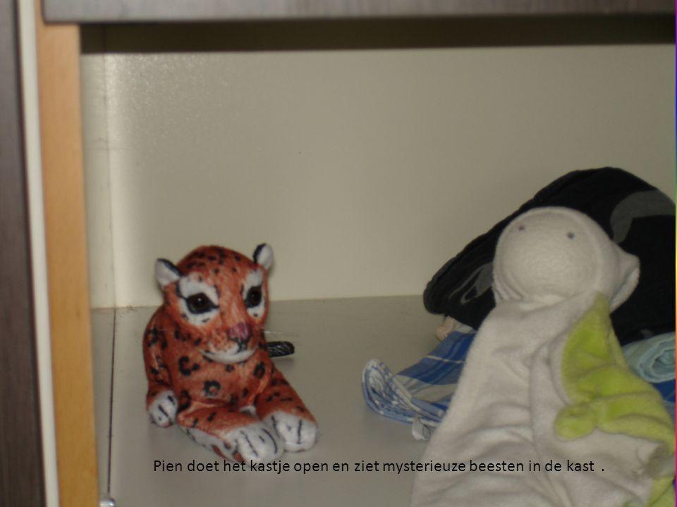 Pien doet het kastje open en ziet mysterieuze beesten in de kast.
