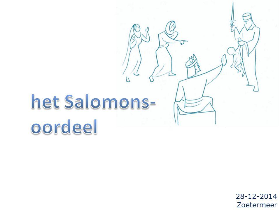 28-12-2014 Zoetermeer