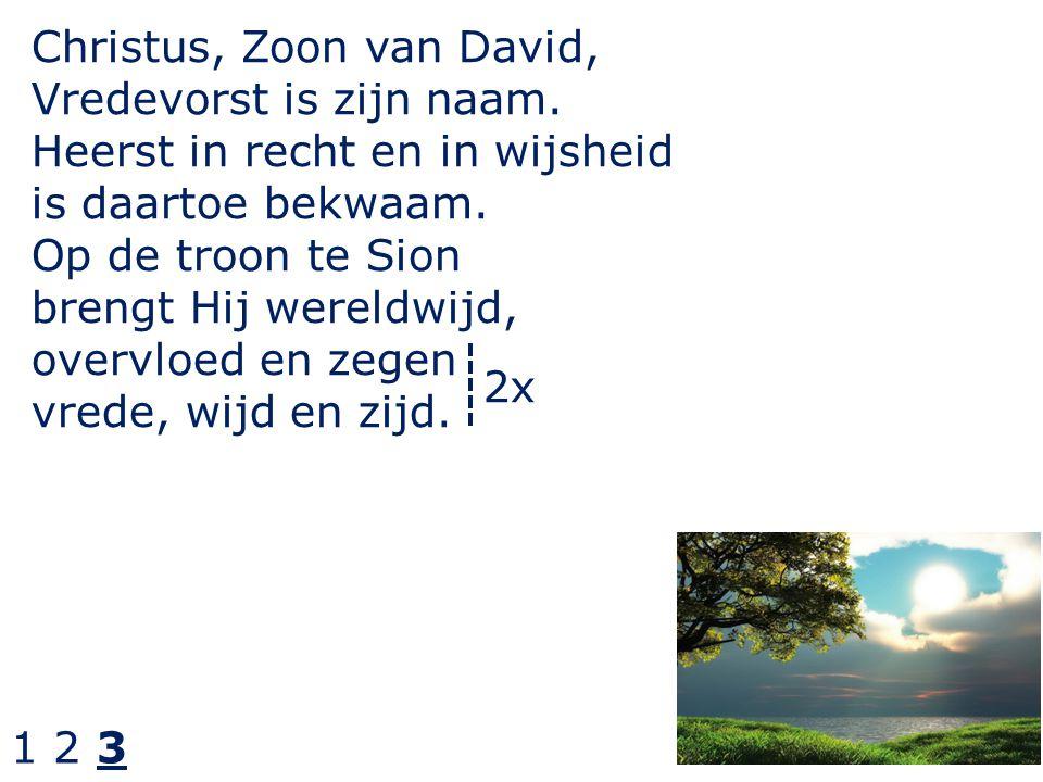 Christus, Zoon van David, Vredevorst is zijn naam.