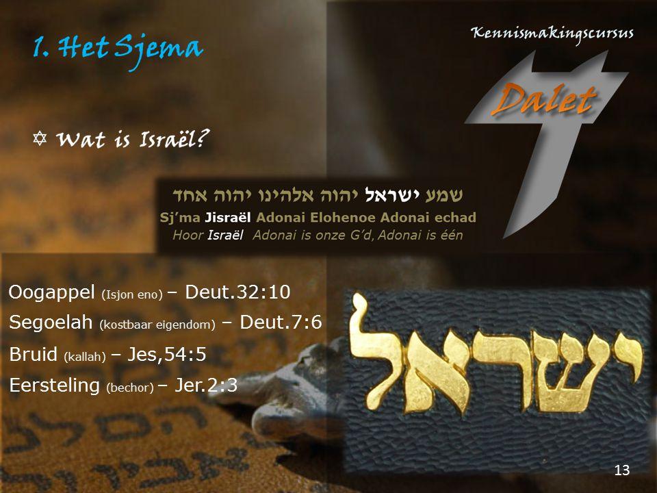 Oogappel (Isjon eno) – Deut.32:10 Segoelah (kostbaar eigendom) – Deut.7:6 Bruid (kallah) – Jes,54:5 Eersteling (bechor) – Jer.2:3 13