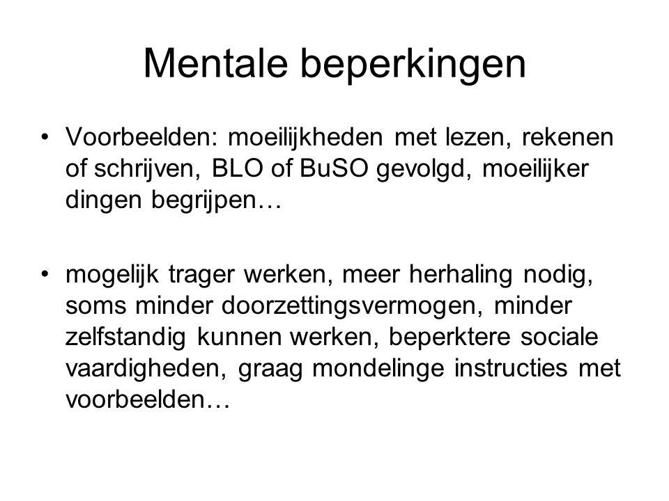 Mentale beperkingen Voorbeelden: moeilijkheden met lezen, rekenen of schrijven, BLO of BuSO gevolgd, moeilijker dingen begrijpen… mogelijk trager werk