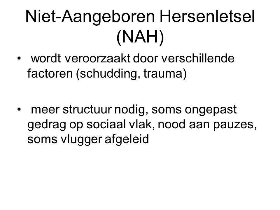Niet-Aangeboren Hersenletsel (NAH) wordt veroorzaakt door verschillende factoren (schudding, trauma) meer structuur nodig, soms ongepast gedrag op soc