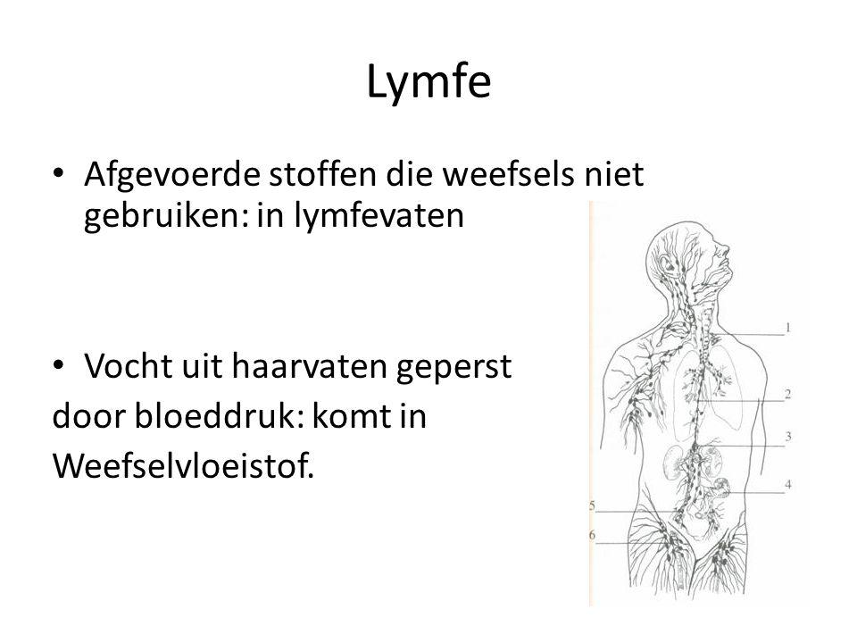 Lymfe Afgevoerde stoffen die weefsels niet gebruiken: in lymfevaten Vocht uit haarvaten geperst door bloeddruk: komt in Weefselvloeistof.