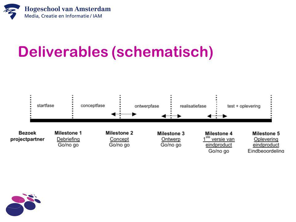 Deliverables (schematisch)