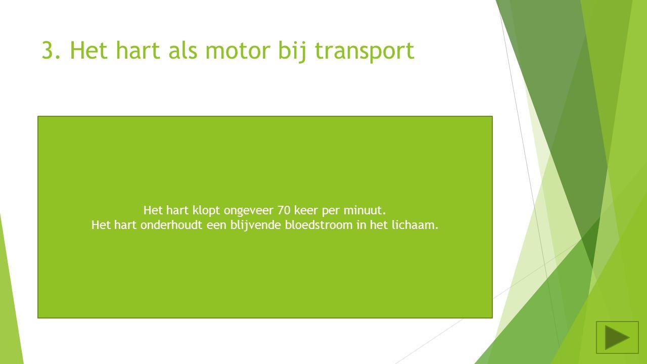 3.Het hart als motor bij transport