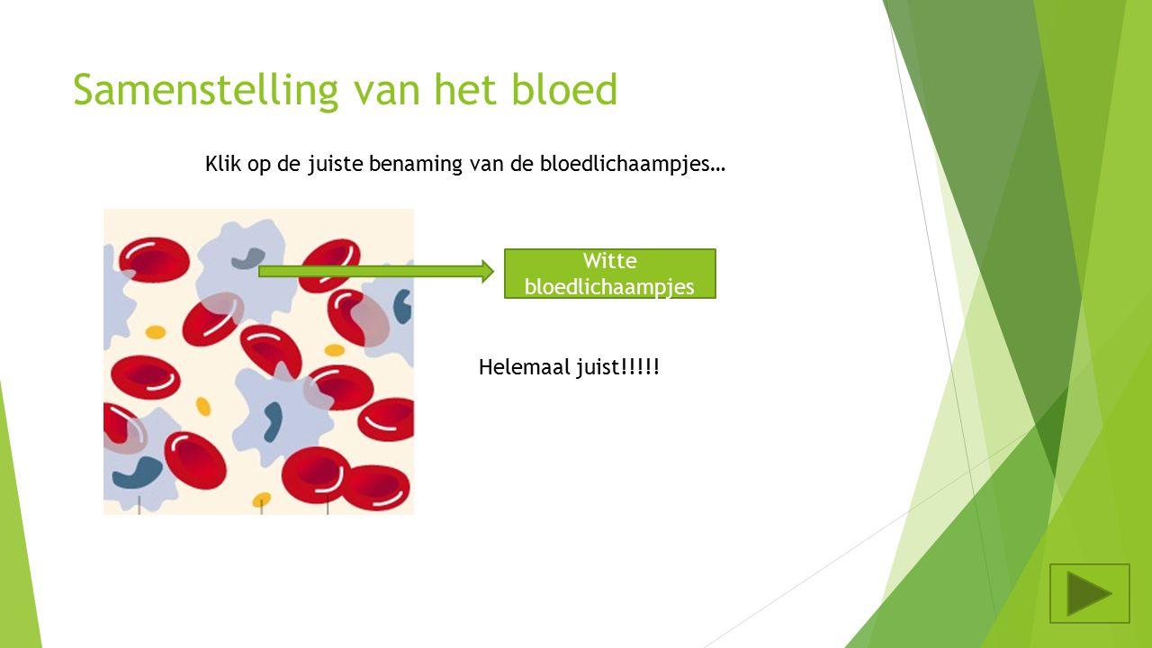 Samenstelling van het bloed Klik op de juiste benaming van de bloedlichaampjes… Bloedplaatjes Bloedplasma Rode bloedlichaampjes Witte bloedlichaampjes