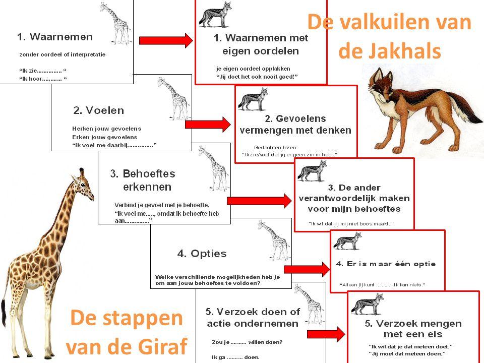 De valkuilen van de Jakhals De stappen van de Giraf