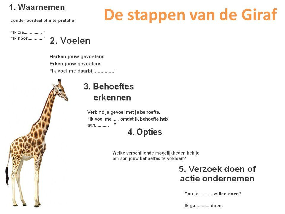 De stappen van de Giraf