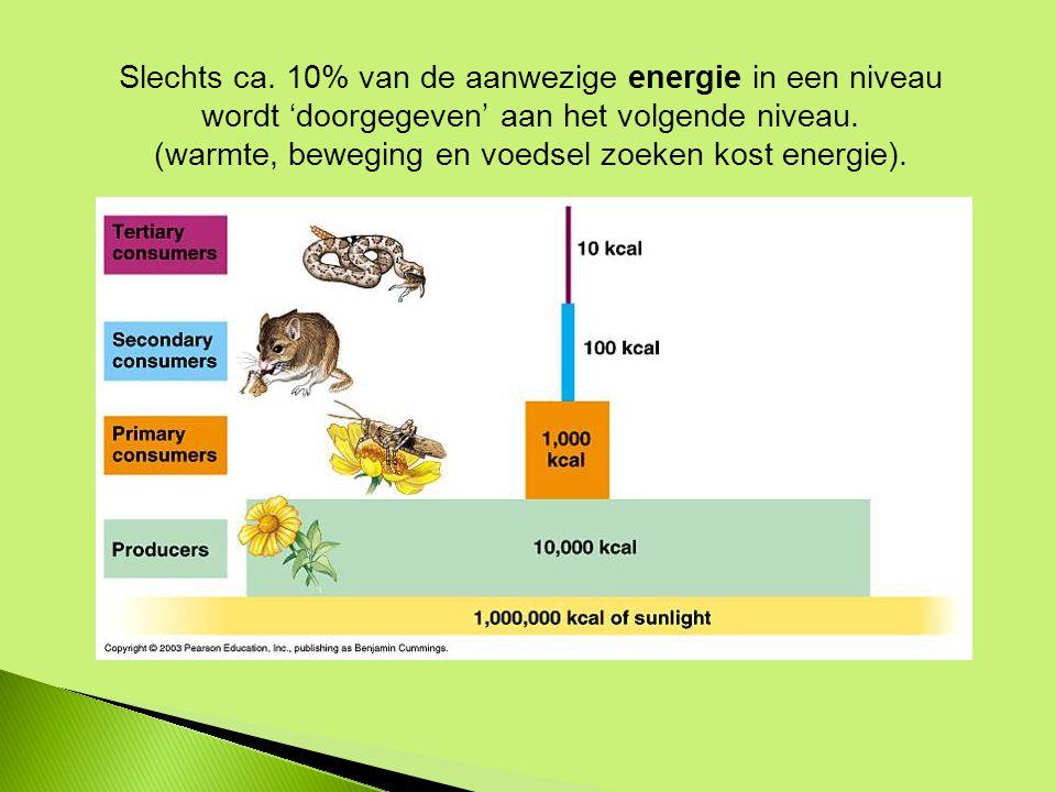 Slechts ca.10% van de aanwezige energie in een niveau wordt 'doorgegeven' aan het volgende niveau.