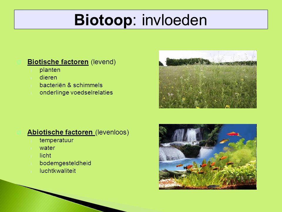 Ø Biotische factoren (levend) l planten l dieren l bacteriën & schimmels l onderlinge voedselrelaties Ø Abiotische factoren (levenloos) l temperatuur l water l licht l bodemgesteldheid l luchtkwaliteit Biotoop: invloeden