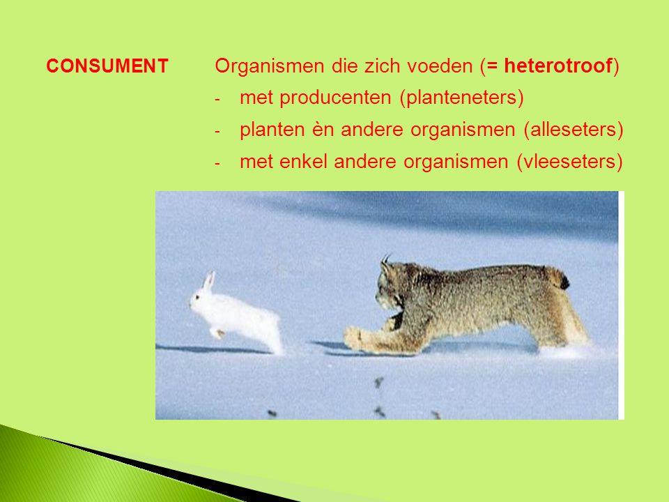 Organismen die zich voeden (= heterotroof) - met producenten (planteneters) - planten èn andere organismen (alleseters) - met enkel andere organismen (vleeseters) CONSUMENT