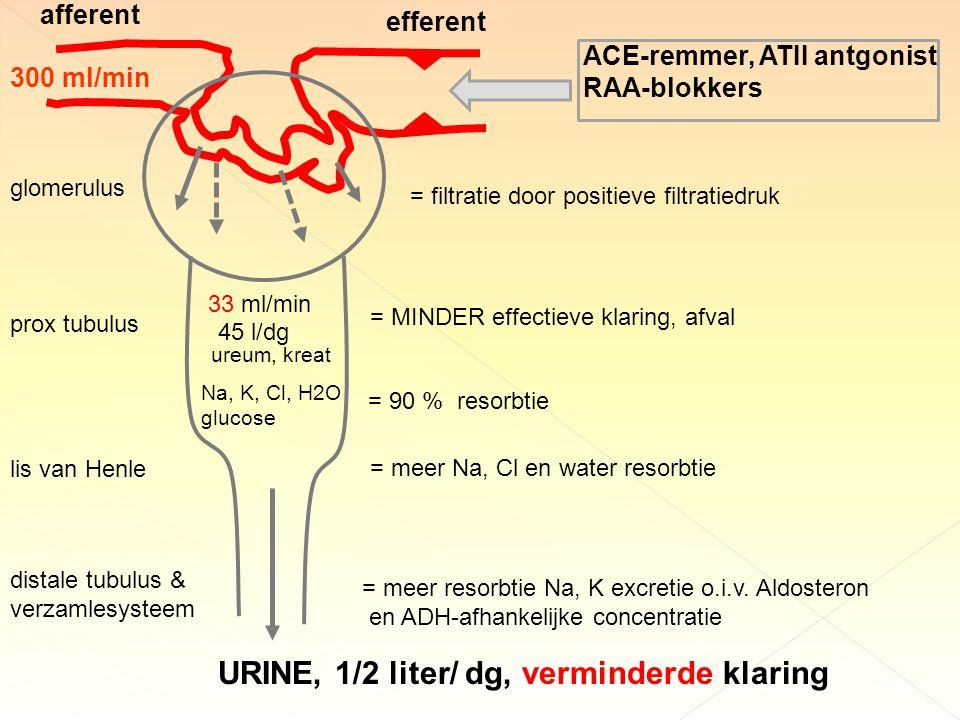 afferent efferent 300 ml/min 33 ml/min 45 l/dg = filtratie door positieve filtratiedruk = MINDER effectieve klaring, afval ureum, kreat Na, K, Cl, H2O glucose = 90 % resorbtie prox tubulus lis van Henle = meer Na, Cl en water resorbtie distale tubulus & verzamlesysteem = meer resorbtie Na, K excretie o.i.v.