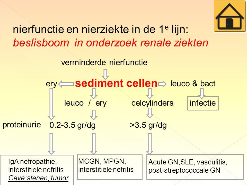 nierfunctie en nierziekte in de 1 e lijn: beslisboom in onderzoek renale ziekten verminderde nierfunctie sediment cellen leuco & bact infectie ery proteinurie 0.2-3.5 gr/dg>3.5 gr/dg leuco / ery Acute GN,SLE, vasculitis, post-streptococcale GN IgA nefropathie, interstitiele nefritis Cave:stenen, tumor MCGN, MPGN, interstitiele nefritis celcylinders