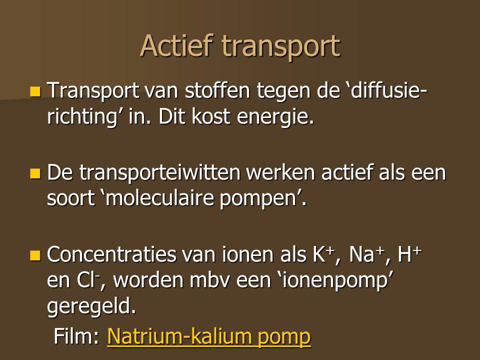 Actief transport Transport van stoffen tegen de 'diffusie- richting' in. Dit kost energie. Transport van stoffen tegen de 'diffusie- richting' in. Dit