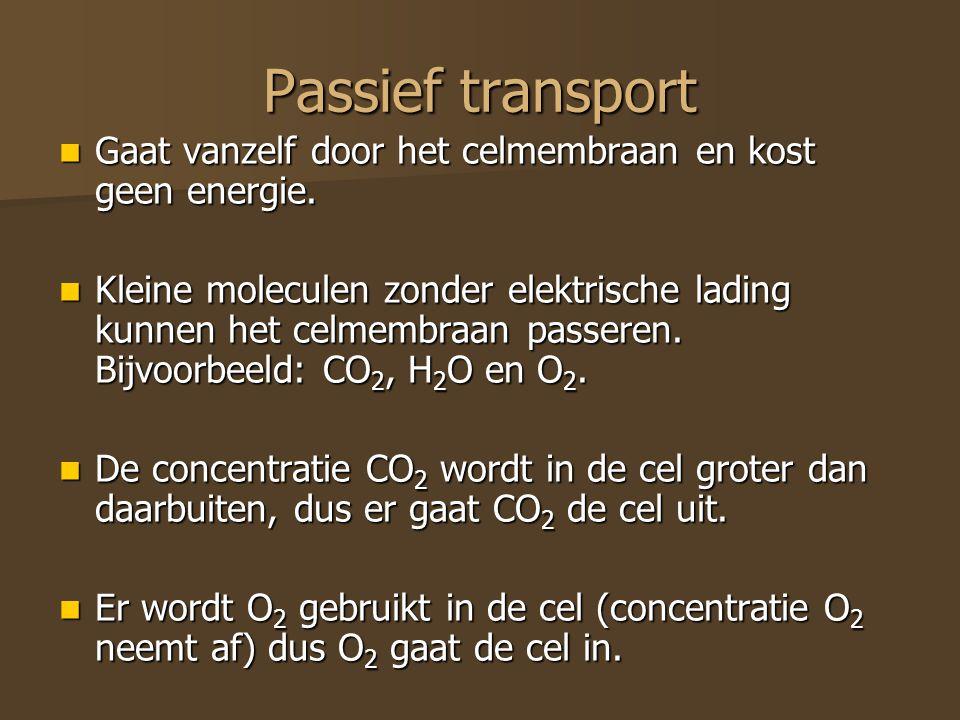 Passief transport Gaat vanzelf door het celmembraan en kost geen energie. Gaat vanzelf door het celmembraan en kost geen energie. Kleine moleculen zon