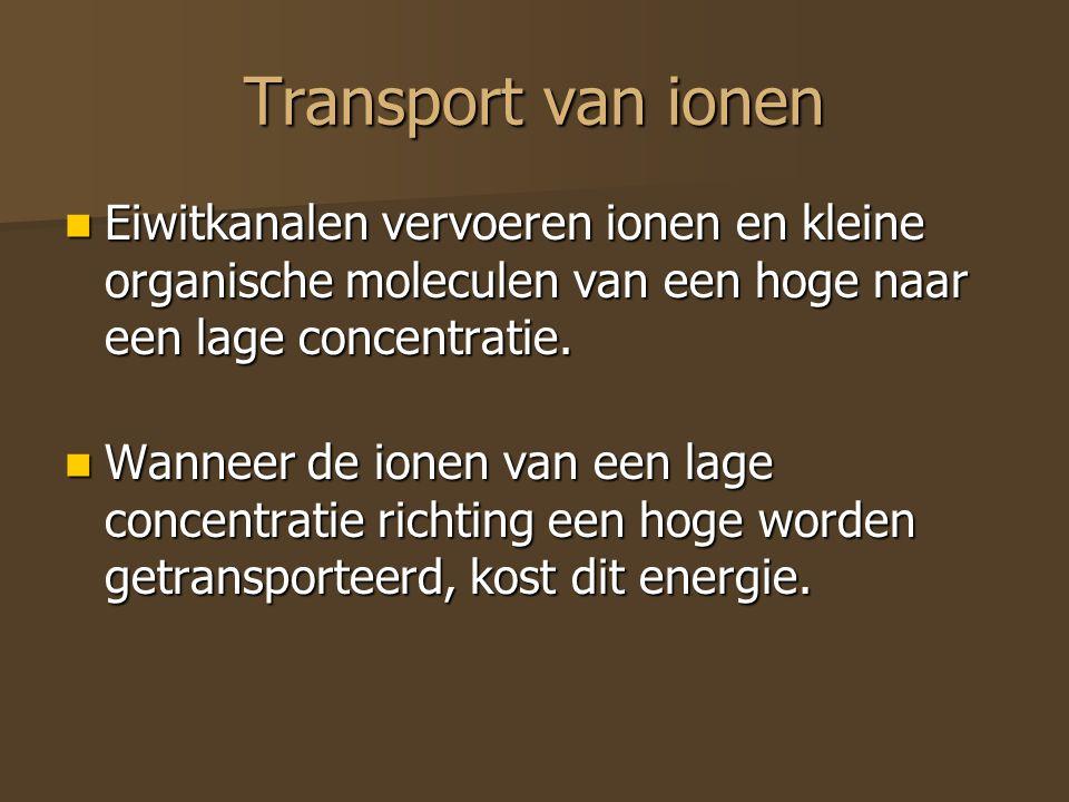Transport van ionen Eiwitkanalen vervoeren ionen en kleine organische moleculen van een hoge naar een lage concentratie. Eiwitkanalen vervoeren ionen