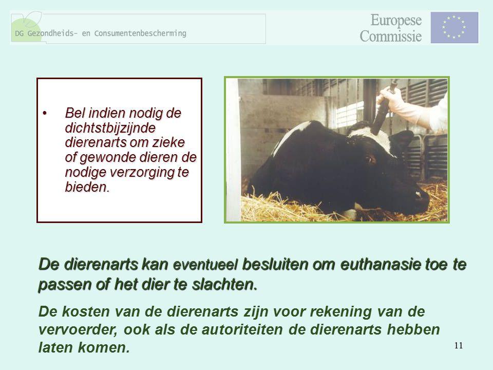 11 Bel indien nodig de dichtstbijzijnde dierenarts om zieke of gewonde dieren de nodige verzorging te bieden.Bel indien nodig de dichtstbijzijnde dier