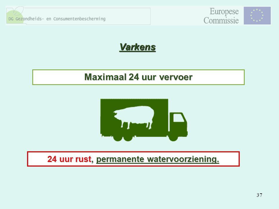 37 Varkens Maximaal 24 uur vervoer 24 uur rust, permanente watervoorziening.