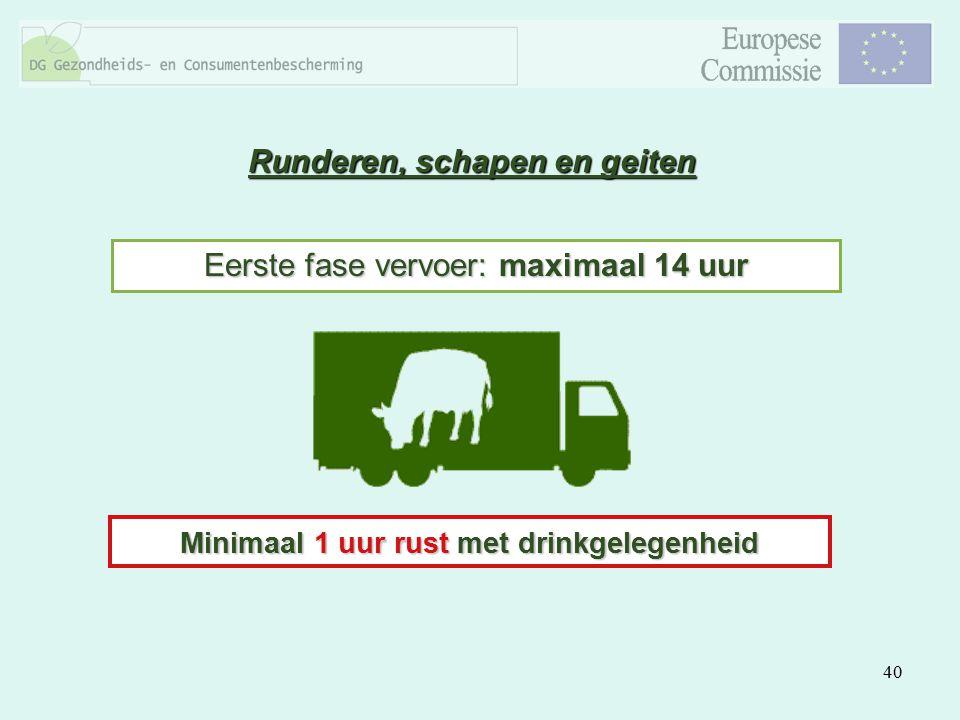 40 Runderen, schapen en geiten Eerste fase vervoer: maximaal 14 uur Minimaal 1 uur rust met drinkgelegenheid