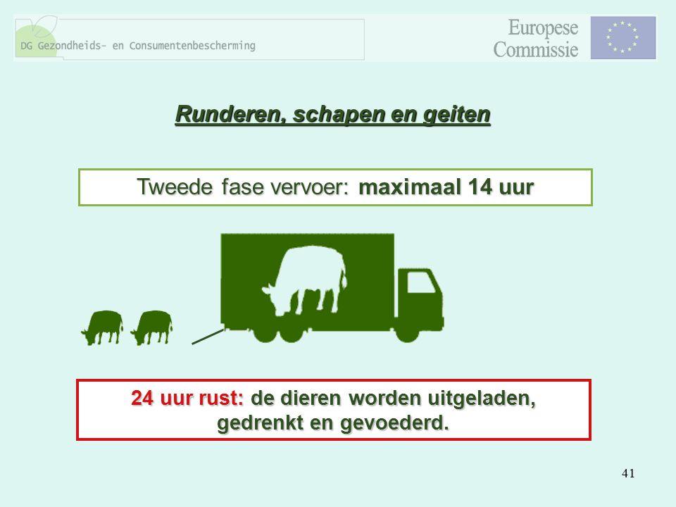 41 Tweede fase vervoer: maximaal 14 uur 24 uur rust: de dieren worden uitgeladen, gedrenkt en gevoederd. Runderen, schapen en geiten