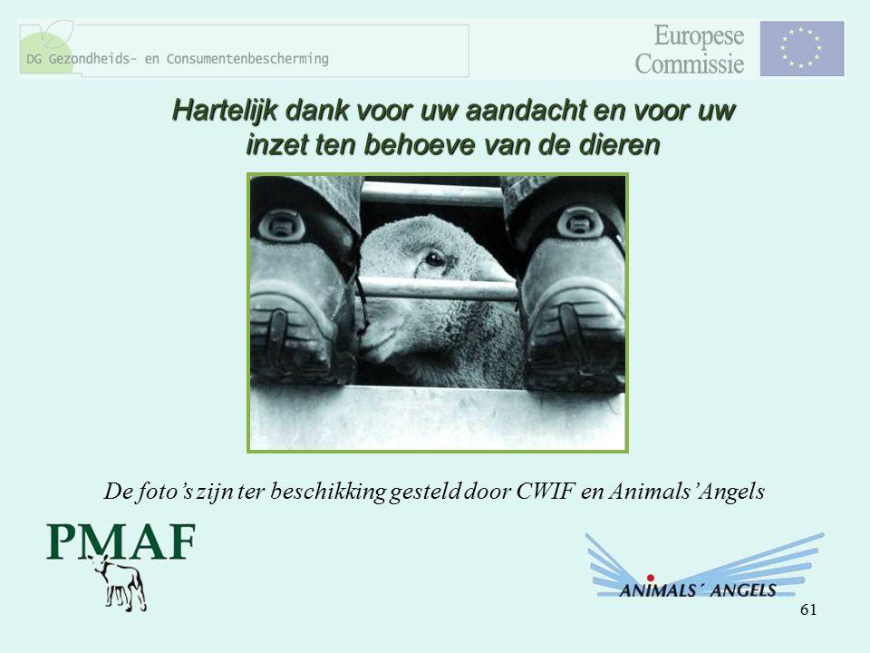 61 Hartelijk dank voor uw aandacht en voor uw inzet ten behoeve van de dieren De foto's zijn ter beschikking gesteld door CWIF en Animals'Angels