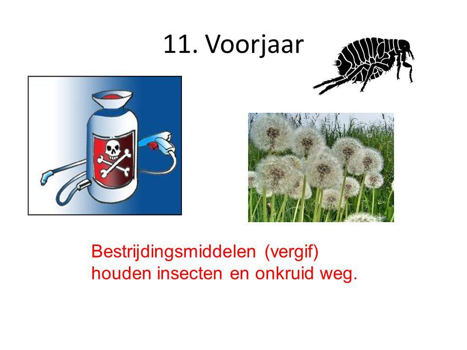 11. Voorjaar Bestrijdingsmiddelen (vergif) houden insecten en onkruid weg.