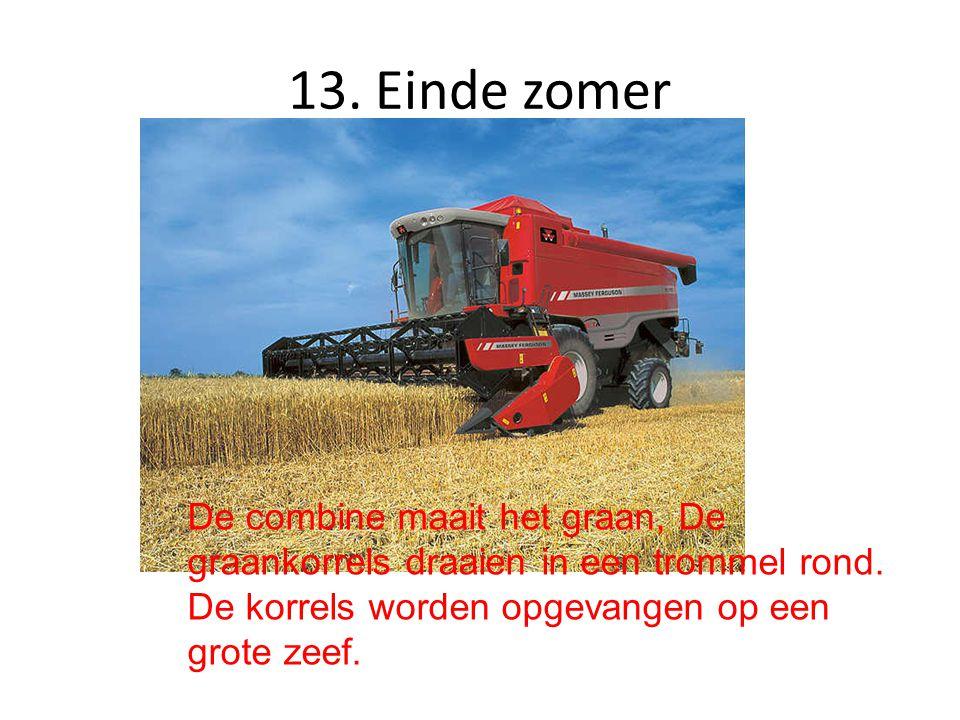13. Einde zomer De combine maait het graan, De graankorrels draaien in een trommel rond. De korrels worden opgevangen op een grote zeef.