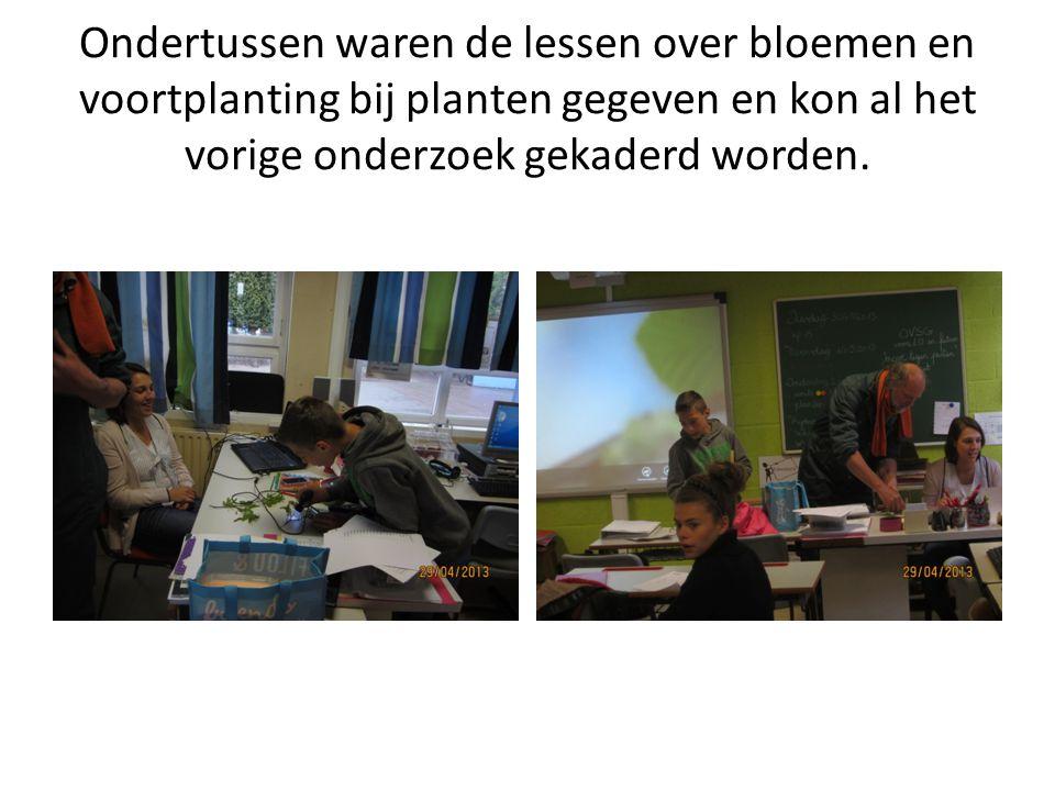 Ondertussen waren de lessen over bloemen en voortplanting bij planten gegeven en kon al het vorige onderzoek gekaderd worden.