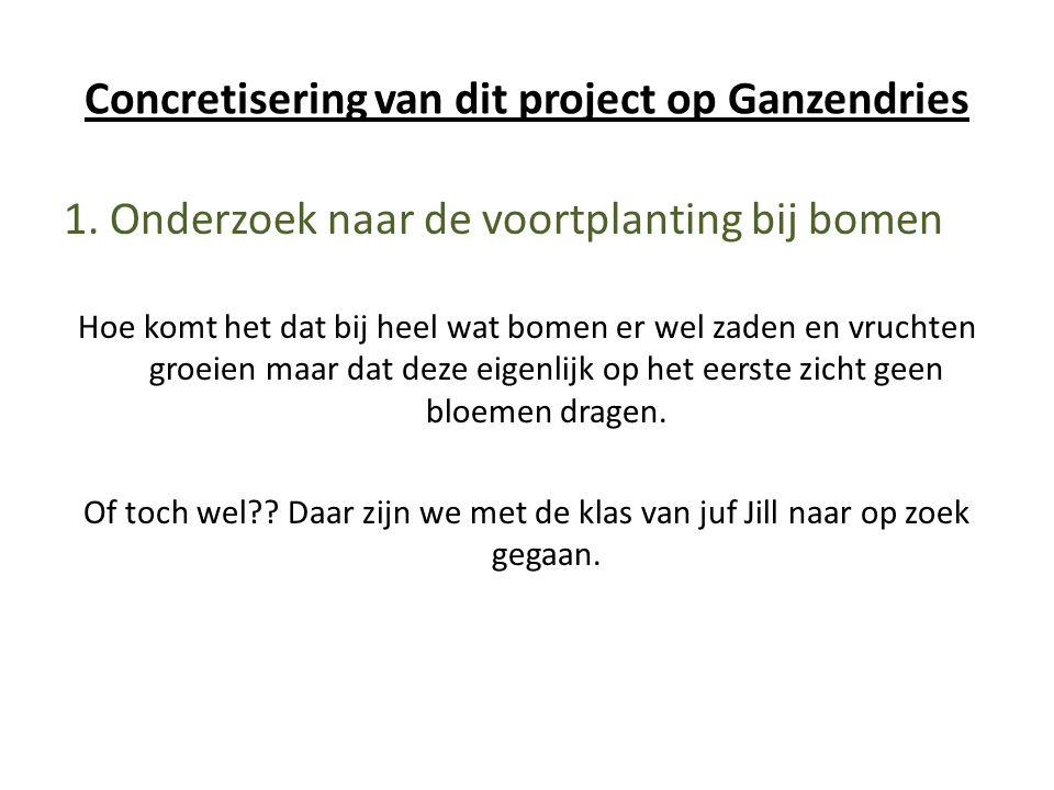 Concretisering van dit project op Ganzendries 1. Onderzoek naar de voortplanting bij bomen Hoe komt het dat bij heel wat bomen er wel zaden en vruchte