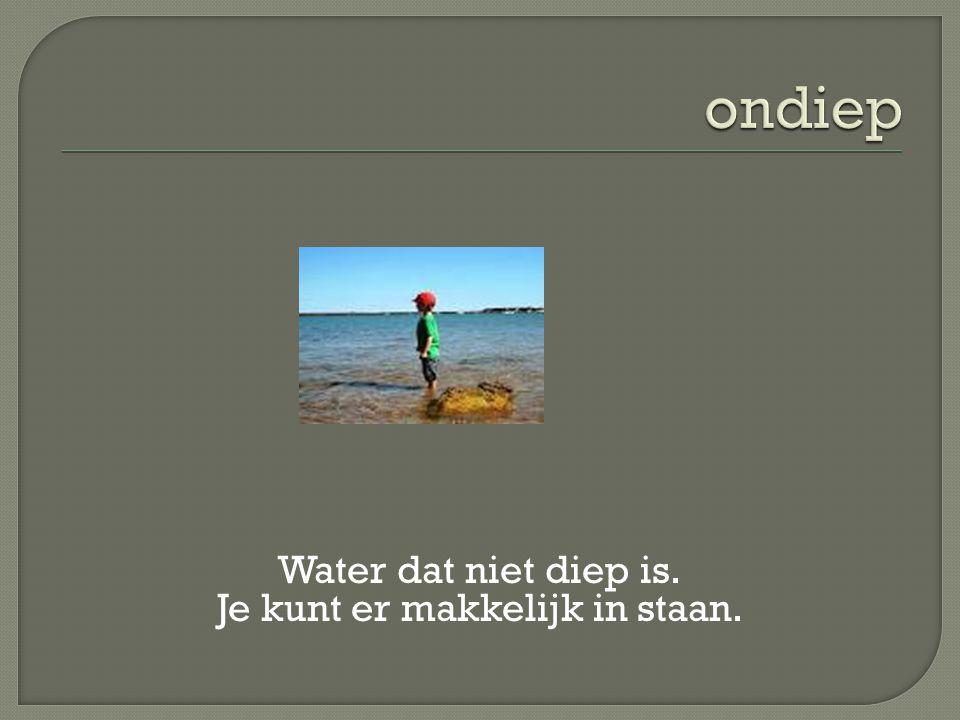 Water dat niet diep is. Je kunt er makkelijk in staan.