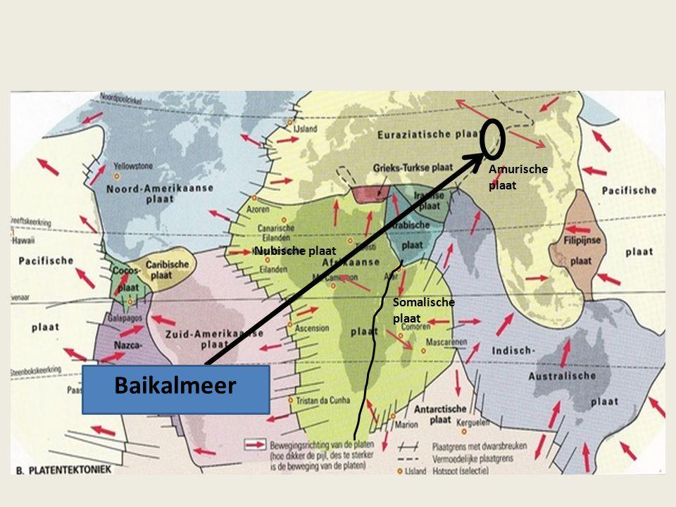 Nubische plaat Somalische plaat Amurische plaat Baikalmeer