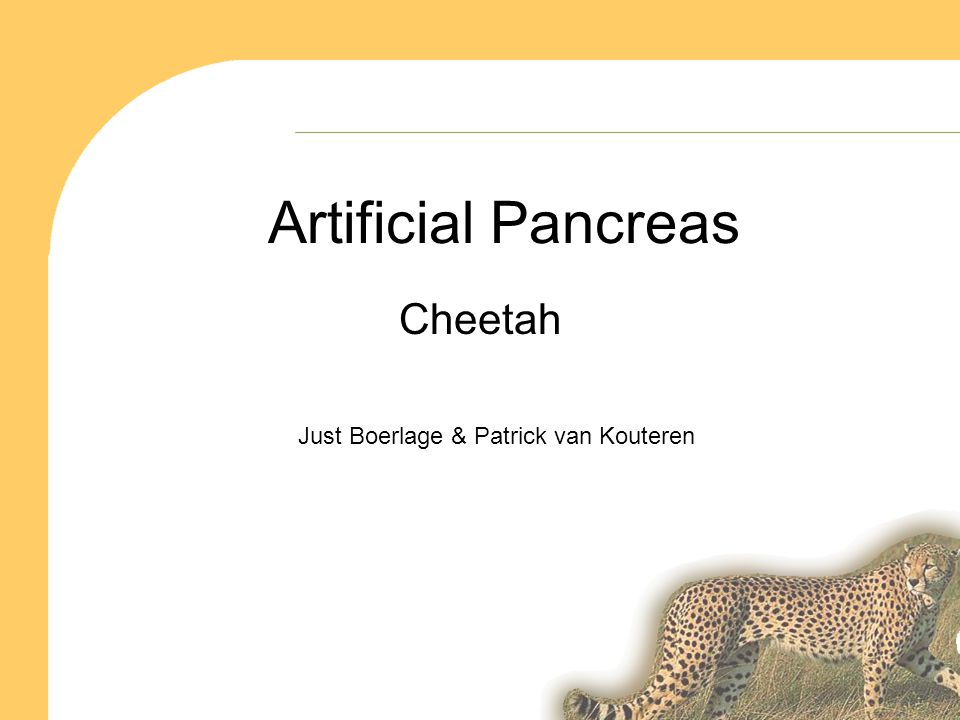 Artificial Pancreas Cheetah Just Boerlage & Patrick van Kouteren