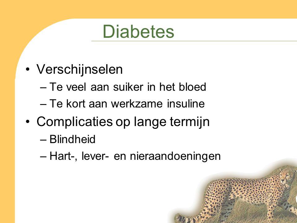 Diabetes Verschijnselen –Te veel aan suiker in het bloed –Te kort aan werkzame insuline Complicaties op lange termijn –Blindheid –Hart-, lever- en nieraandoeningen