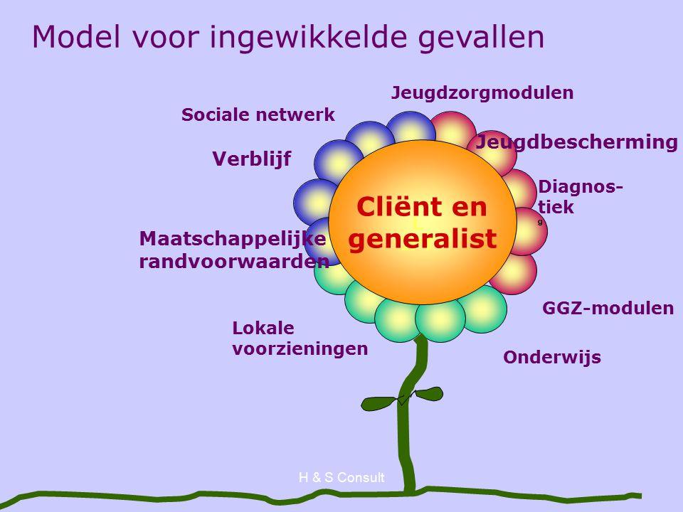 H & S Consult L IPT Diagnos- tiek g Lokale voorzieningen Verblijf Jeugdzorgmodulen Cliënt en generalist Model voor ingewikkelde gevallen GGZ-modulen Maatschappelijke randvoorwaarden Jeugdbescherming Sociale netwerk Onderwijs