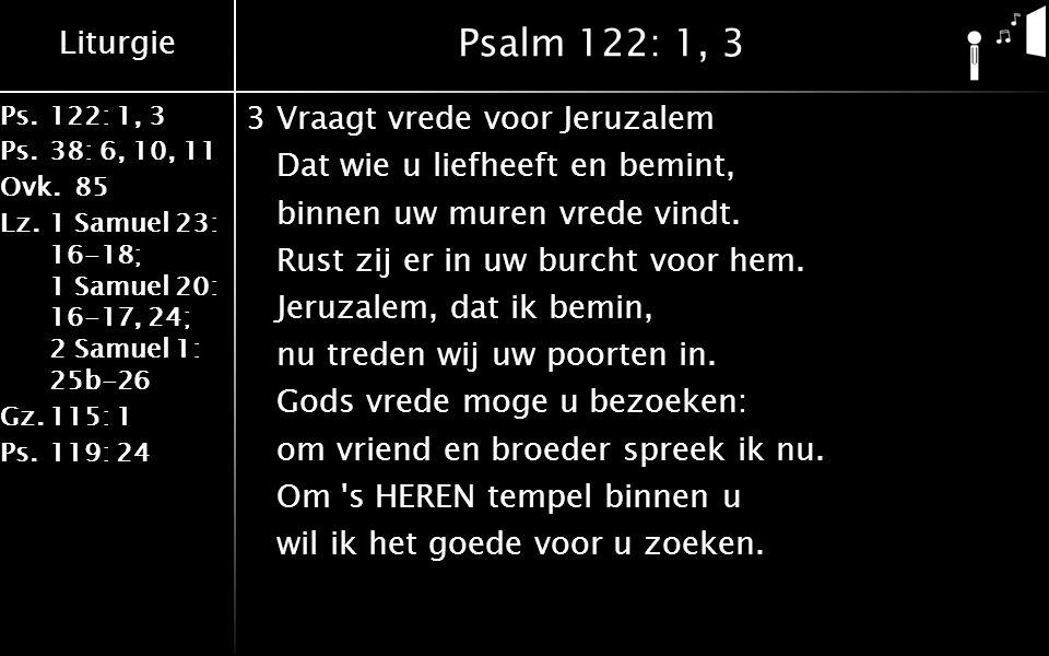Liturgie Ps.122: 1, 3 Ps.38: 6, 10, 11 Ovk.85 Lz.1 Samuel 23: 16-18; 1 Samuel 20: 16-17, 24; 2 Samuel 1: 25b-26 Gz.115: 1 Ps.119: 24 Psalm 122: 1, 3 3Vraagt vrede voor Jeruzalem Dat wie u liefheeft en bemint, binnen uw muren vrede vindt.