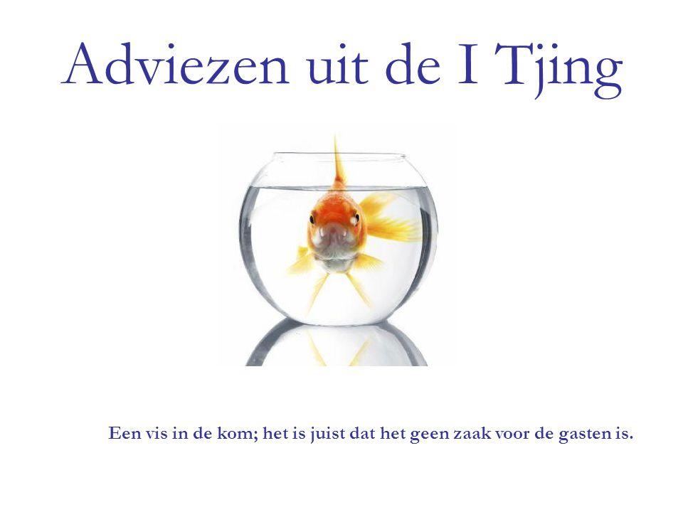 Adviezen uit de I Tjing Een vis in de kom; het is juist dat het geen zaak voor de gasten is.